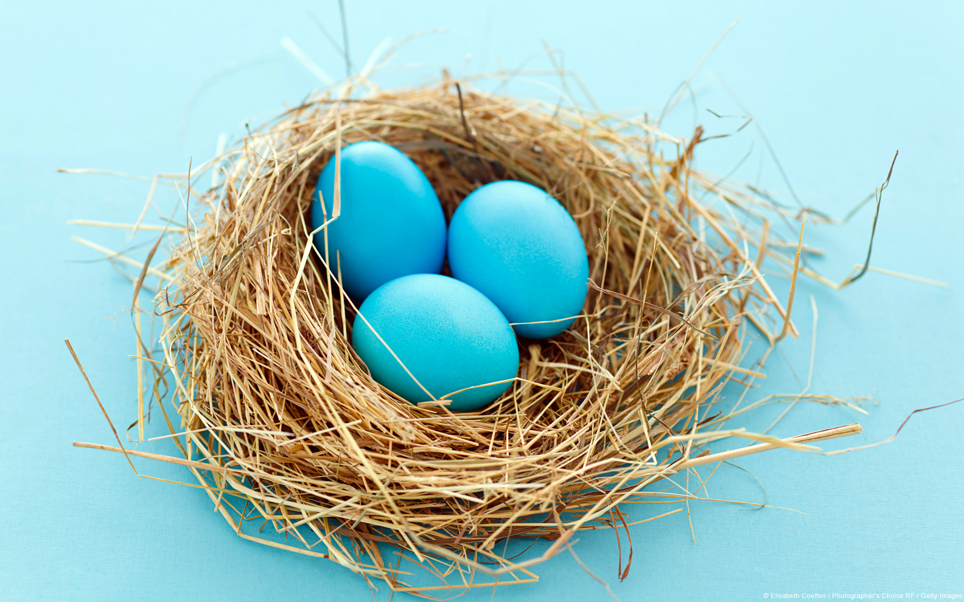 Painted eggs in a nest made of straw